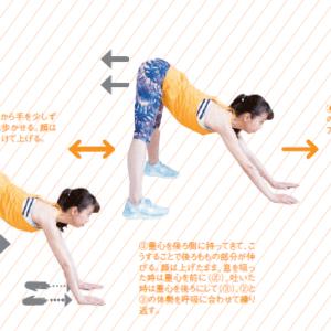 肩甲骨&骨盤周辺の調整法②【姿勢改善エクササイズ】
