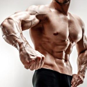 筋肉だけではなく、「血管」を鍛えるトレーニング